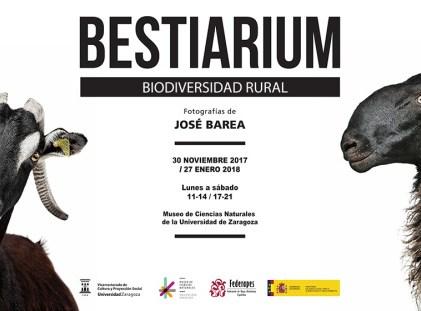 LONA_bestiarium_baja