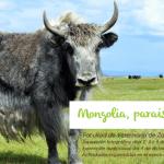 Exposición: Mongolia, paraíso nómada en la Facultad de Veterinaria de Zaragoza