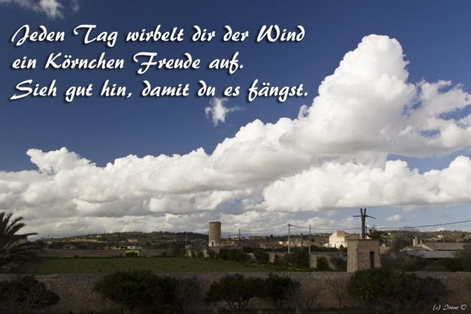 Wind_Freude