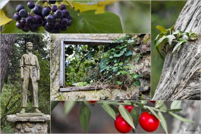 Lluc, botanischer Garten