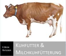 Kuhfutter & Milchkuhfütterung