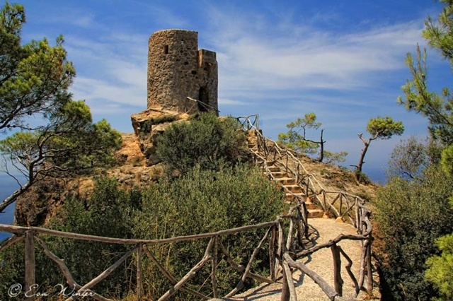 Mallorca 14