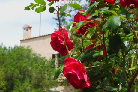 24.09. Autoren-Treffen Son Baulo @ Kulturfinca Son Bauló | Lloret de Vistalegre | Illes Balears | Spanien