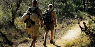 Turismo rural, una buena opción
