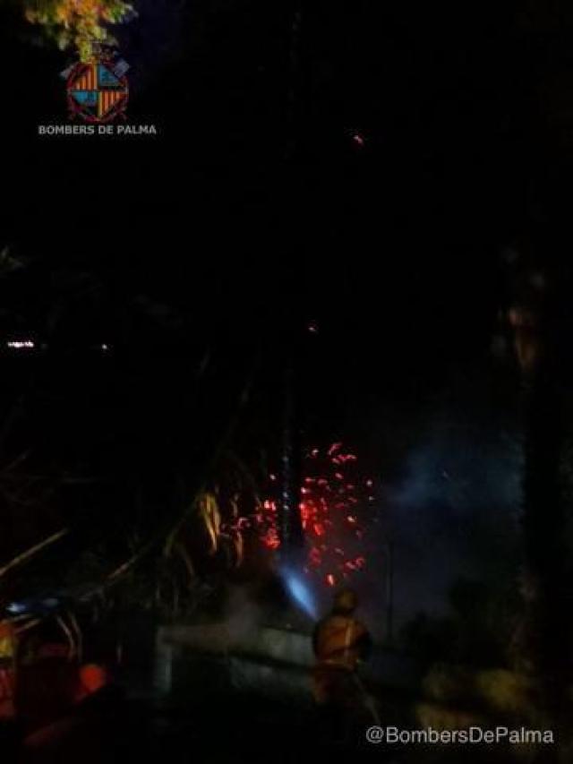 bomberos palmera 2