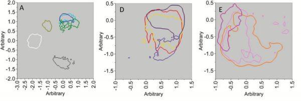Análisis de contornos de la fase 1. A. Azúcares (blanco), cloruro de sodio (amarillo oscuro), blanco (gris), ácido acético (azul claro), ácido cítrico (azul oscuro ) y ácido hexenoico (verde). D. Acido oleico (amarillo), ácido linoleico (rojo), quinina (morado oscuro) y urea (violeta). E. Acido Decenoico (naranja), monofosfato de inosina (rosa claro) y el glutamato monosódico (rosa brillante). Adaptado de Ref X.