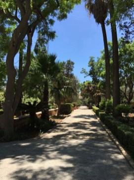 San Anton Gardens(サン・アントン・ガーデン)