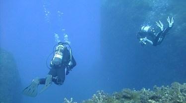 Filfla reef dive site next to Blue Grotto Malta