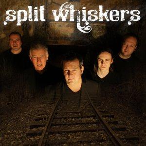 Split Whiskers