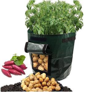 Saco Para Cultivo de Vegetais