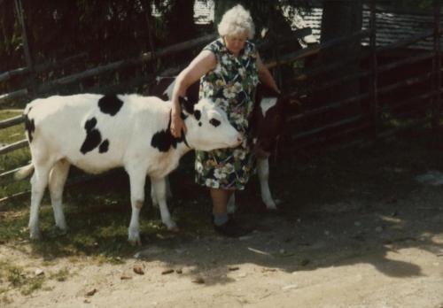 Ingeborg och korna