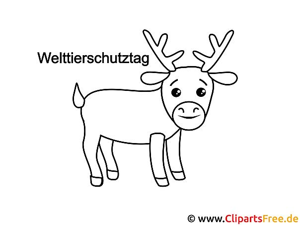Hirsch Ausmalvorlage