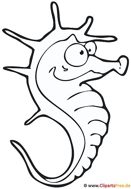 Seepferdchen Malvorlage