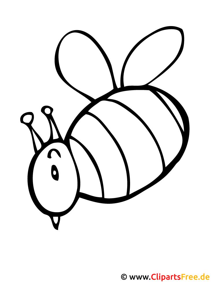 Biene Malvorlage