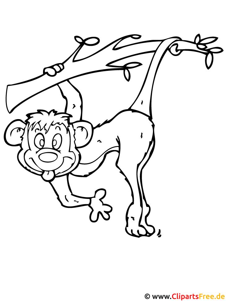Affe Malvorlage gratis - Zoo Malvorlagen
