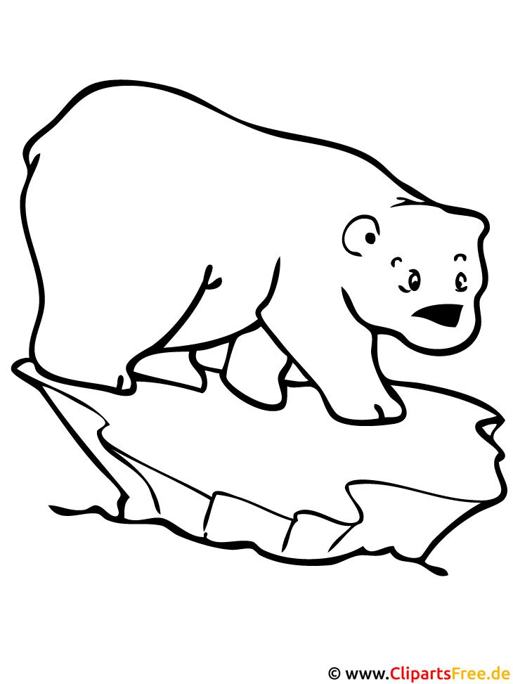 Eisbär Malvorlage - Malvorlagen gratis