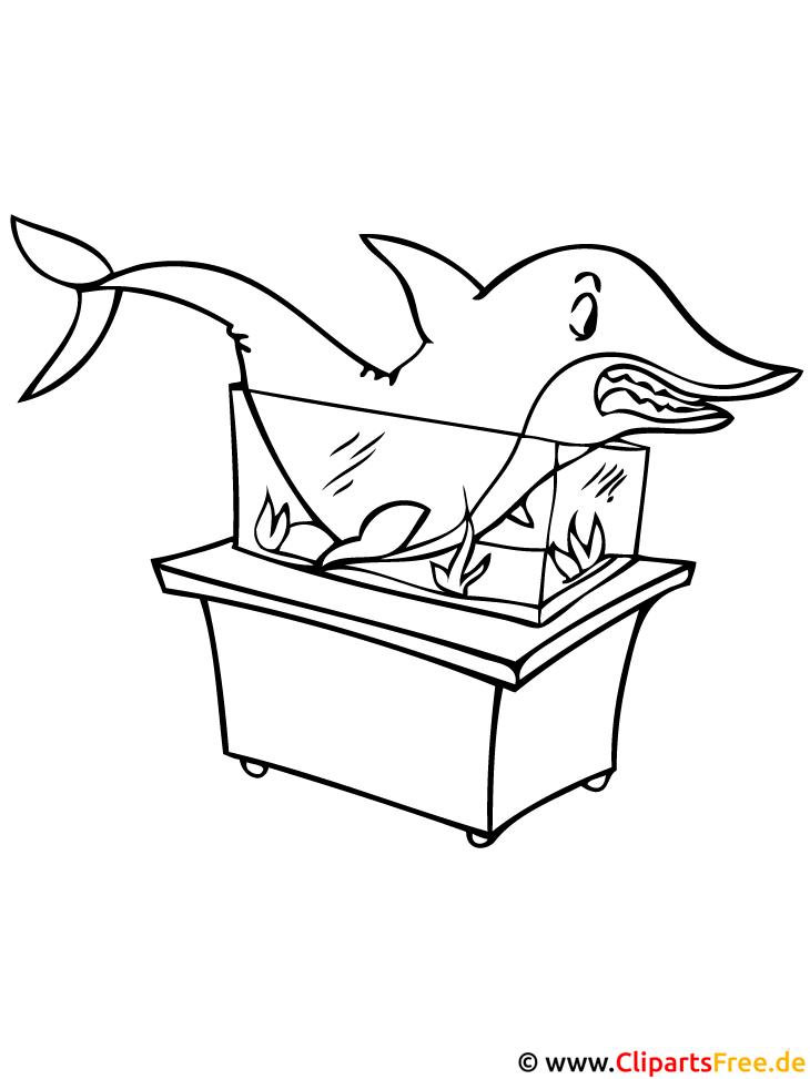 Hai Ausmalbild - Zoo Ausmalbilder