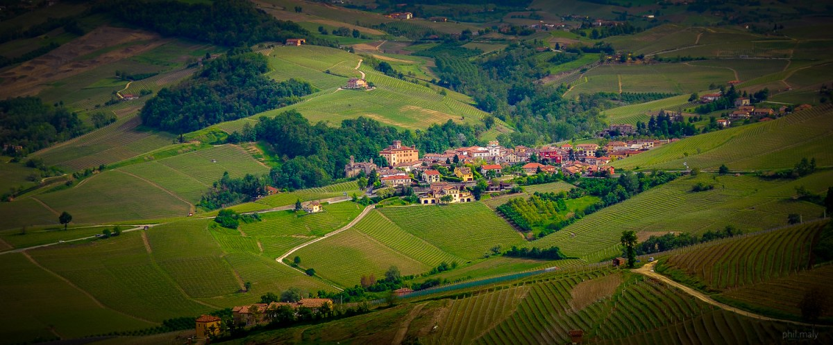 The village of Barolo surrounded by its famous vineyards