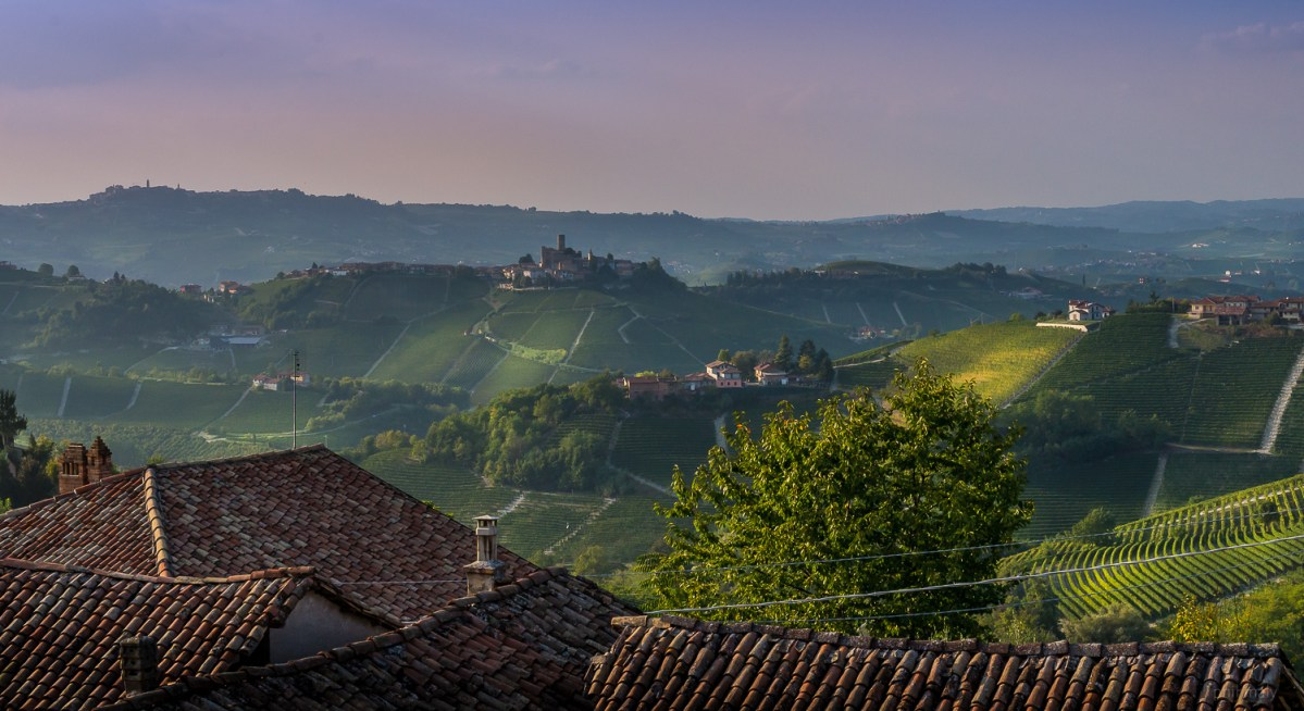 The gorgeous hills of Langhe in Piemonte at sunset
