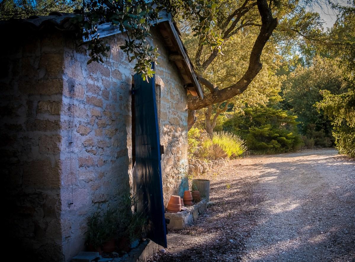 Garden's hut with the morning sun peeking through the trees