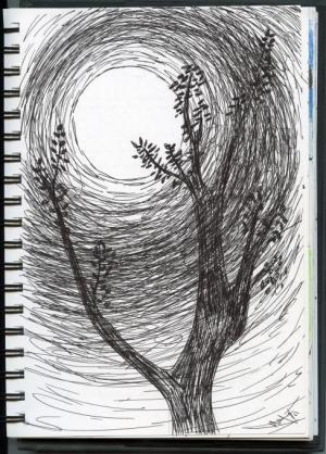 moon drawing nature tree drawings simple michele hutton easy