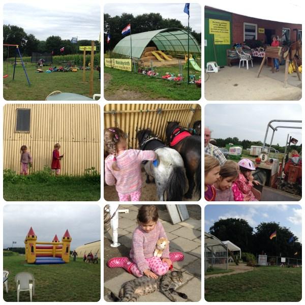 Ponyhof und Maislabyrinth