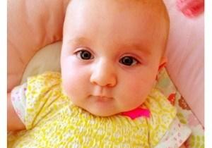Seventeen weeks old