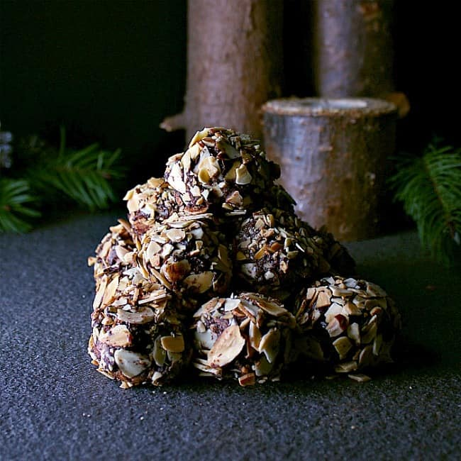 chocolate-almond-low-carb-truffles-4