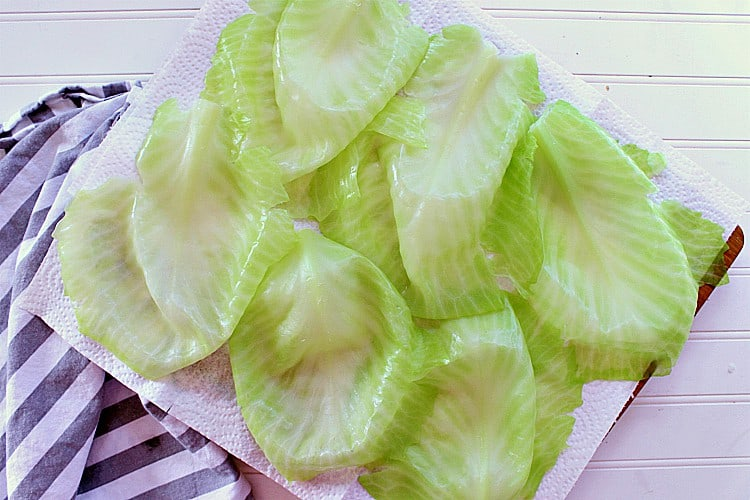 Freshly boiled cabbage leaves.