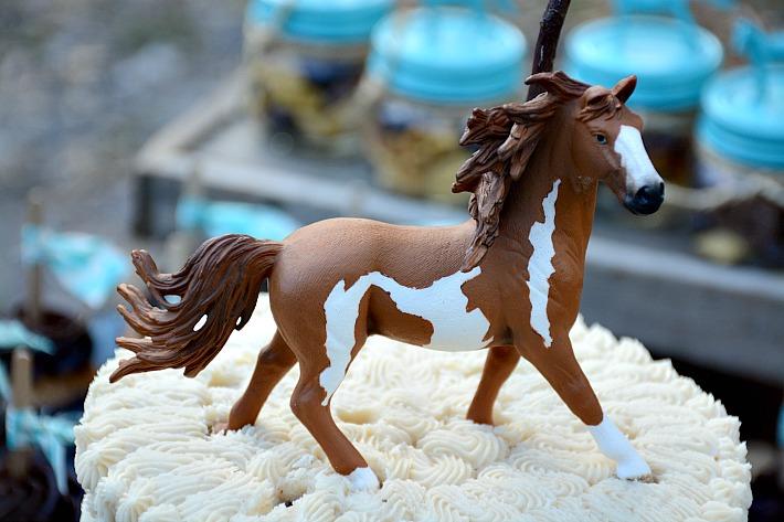 horse259-copy