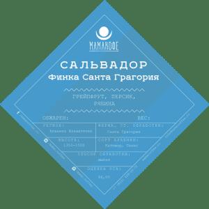 Кофе свежей обжарки Сальвадор Финка Санта Грагория - Мамакофе - Санкт-Петербург
