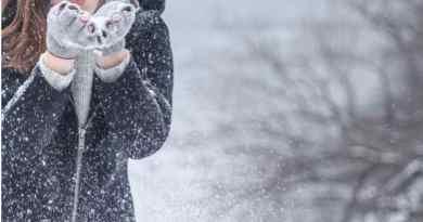 embrace winter