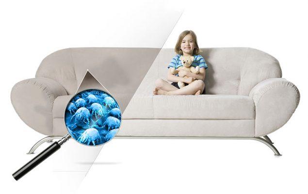 sofa sujeira ácaro