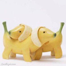 Cachorrinho de banana