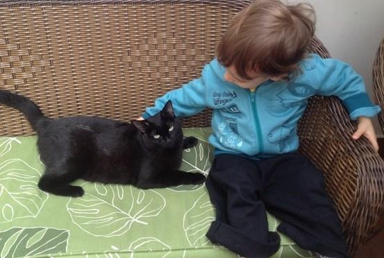 Filhos: por que é legal adotar um animal de estimação