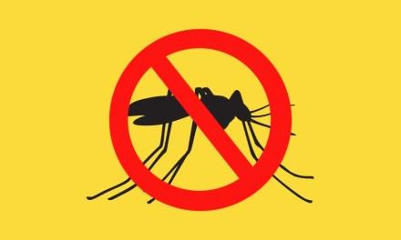 Saiba quem não deve tomar vacina contra a febre amarela e como se proteger