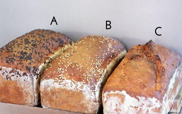 panes enteros segunda fermentación