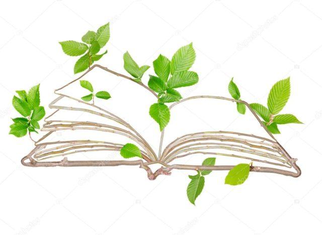 διάβασμα και γνώση