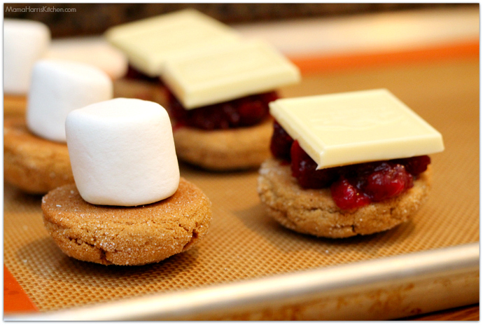 Holiday Gingerbread S'Mores with cranberry sauce and white chocolate | Mama Harris' Kitchen