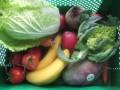 Frisches, geliefertes Obst von der Ökokiste!