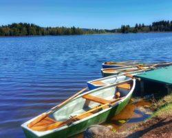 Boote zum Ausleihen am Fischhäusl.