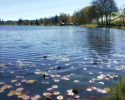 Traumhaft und naturbelassen, der Soier See.