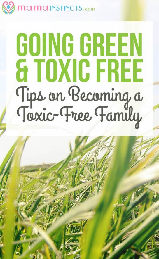Becoming a toxic-free family can be an overwhelming process. Read these tips on how to become a green family and where to find resources to accomplish this.