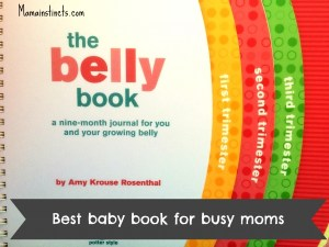 Best pregnancy book for busy moms