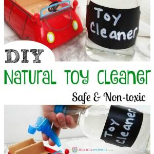 DIY Natural Toy Cleaner