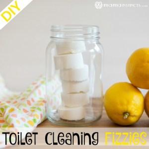 DIY Toilet Cleaning Fizzies
