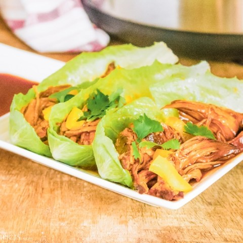 Instant Pot BBQ Pulled Chicken Recipe