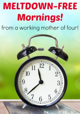 Meltdown-Free Mornings from a working mother of four! Everything you need to know!