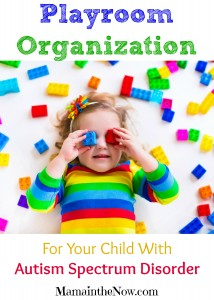 Playroom Organization for Your Child with ASD (Autism Spectrum Disorder)
