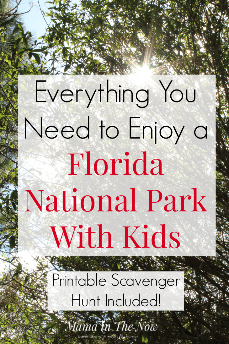 Explore Florida's National Parks with kids. Enjoy a scavenger hunt of Florida's wildlife. Packing list, tips and hacks to enjoy Florida National Parks with kids.